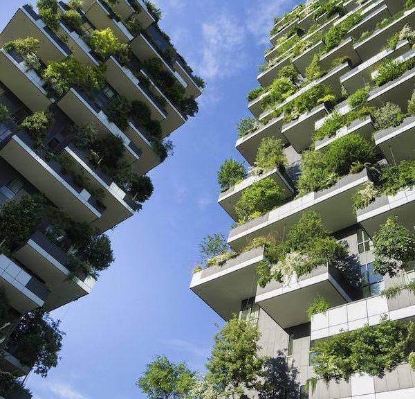 绿色城市化——与约翰·德乔亚(John DeGioia)的对话